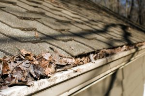 focus with - house fallen selective autumn leaves Shamrock filled in the Roofing gutter