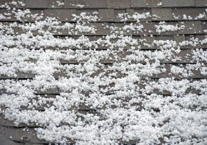 with Hail on Roof Roofing Roof. Hail. - Shamrock Heavy After Storm the Closeup.