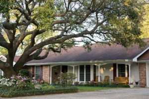 Preventing Roof Damage from Trees in Kansas City