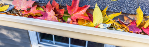 Top 5 Autumn Roof Maintenance Tips