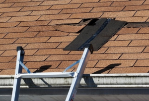Leak? Your Johnson New Roof Roofer To Roofing What's Shamrock Causing | Shamrock County In -