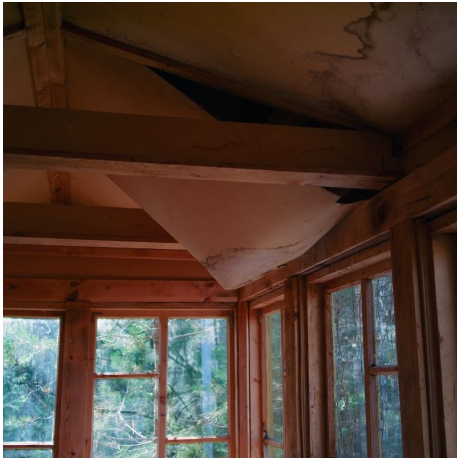 Find That Roof Leak – Before the Damage Is Done!