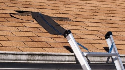 The Importance of Timely Roof Repairs